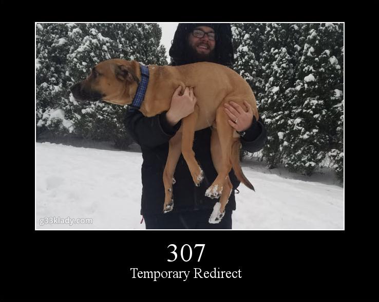 307TempRedirect_img