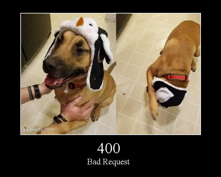 400BadRequest_img